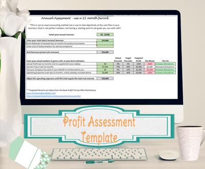 profit assessment template-400px